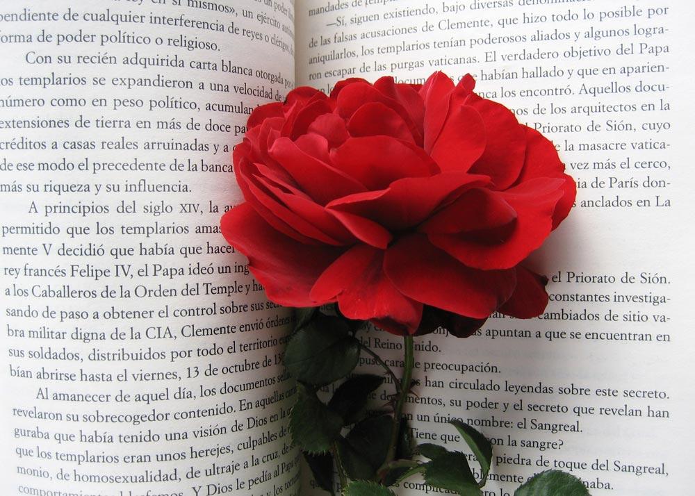 Eriginal Books anuncia nuevas ofertas en el Día del Libro (SantJordi)