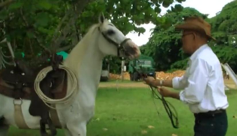 miguel_caballo