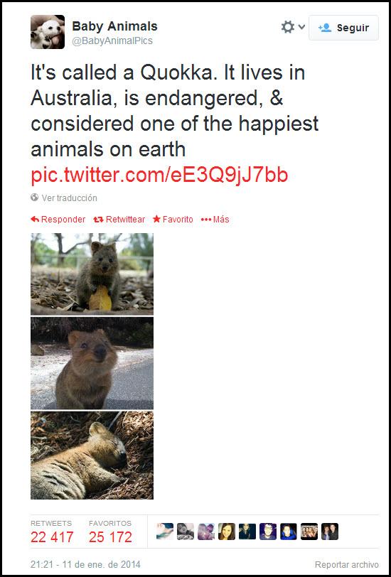 Otro Tweet popular