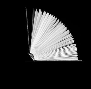 libro_lector